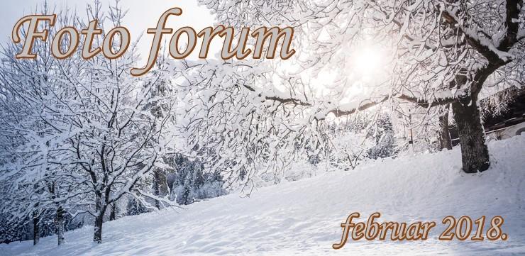 Foto-forum u slici - Page 27 1rrr10