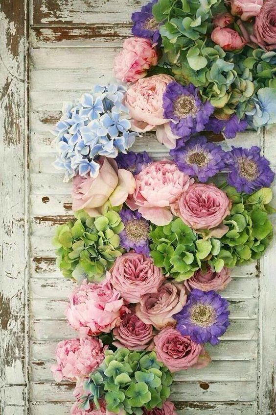 Cveće 21038410