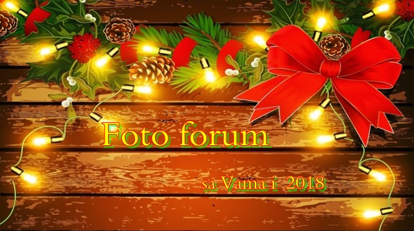 Foto-forum u slici - Page 27 23360710