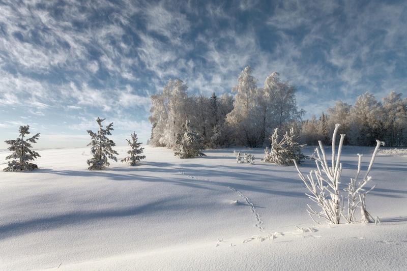 Zimski pejzaži-Winter landscapes - Page 26 82767510