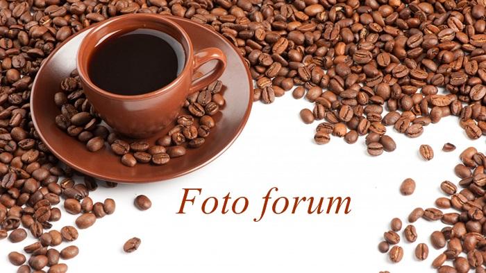 Foto-forum u slici - Page 26 99px_r14