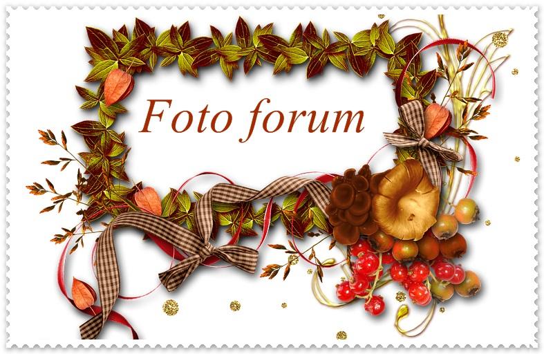 Foto-forum u slici - Page 26 Autumn14
