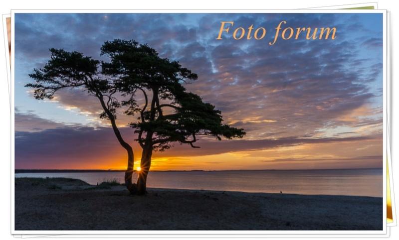 Foto-forum u slici - Page 26 Captu136