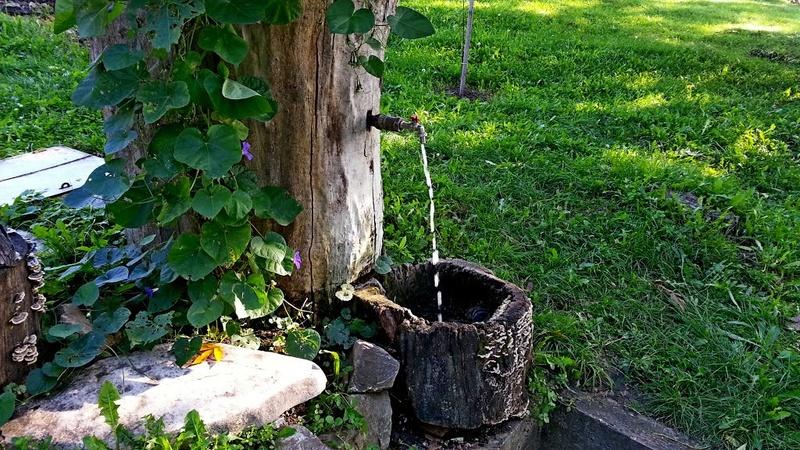 Česme, bunari i izvori - Page 2 Esma615
