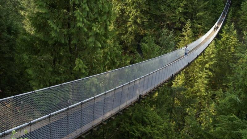 Mostovi - Page 5 Most317