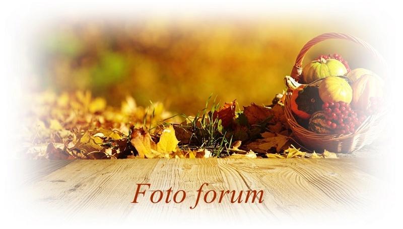 Foto-forum u slici - Page 26 Tapeta46
