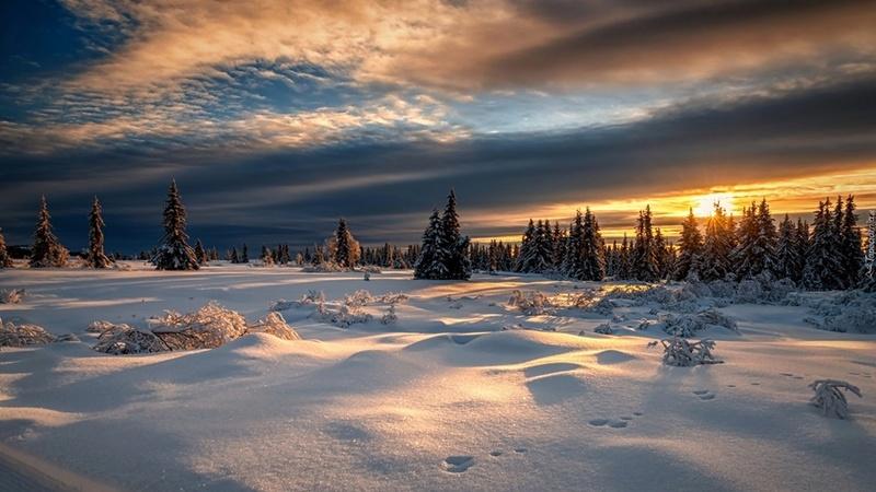 Zimski pejzaži-Winter landscapes - Page 16 Tapeta53