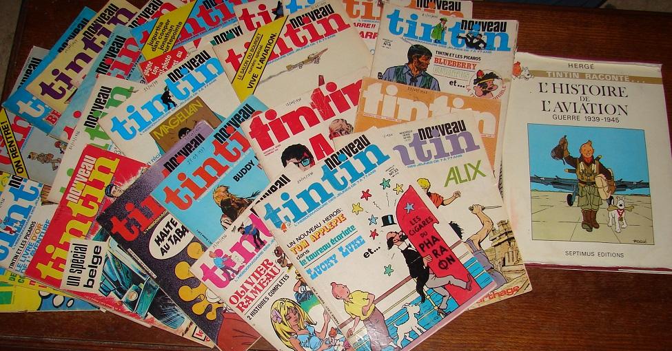 tintin - Pour les fans de Tintin - Page 16 Dsc01150