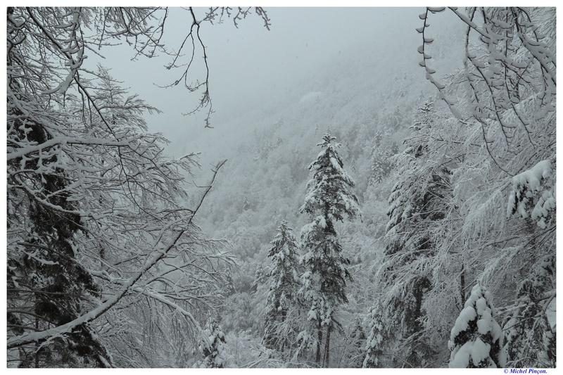 Une semaine à la Neige dans les Htes Pyrénées - Page 6 Dsc01455