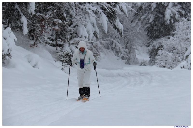 Une semaine à la Neige dans les Htes Pyrénées - Page 6 Dsc01456