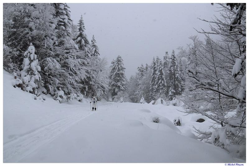 Une semaine à la Neige dans les Htes Pyrénées - Page 6 Dsc01461