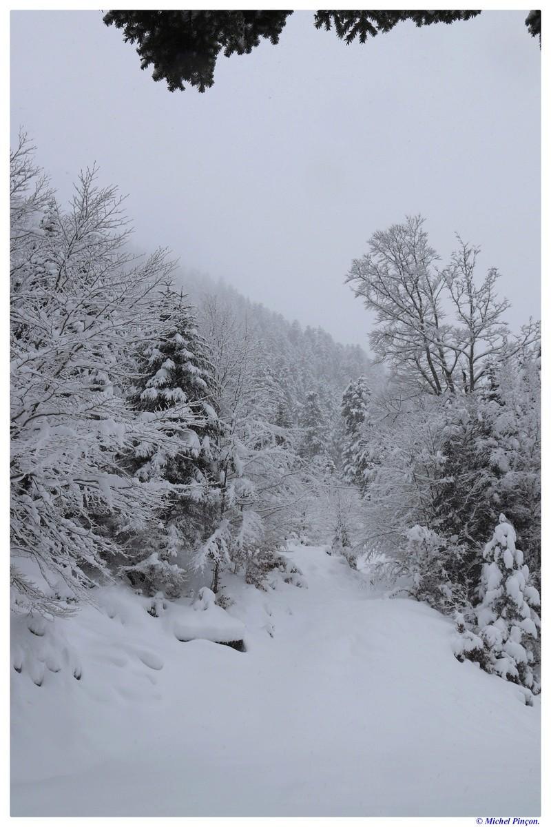 Une semaine à la Neige dans les Htes Pyrénées - Page 6 Dsc01462