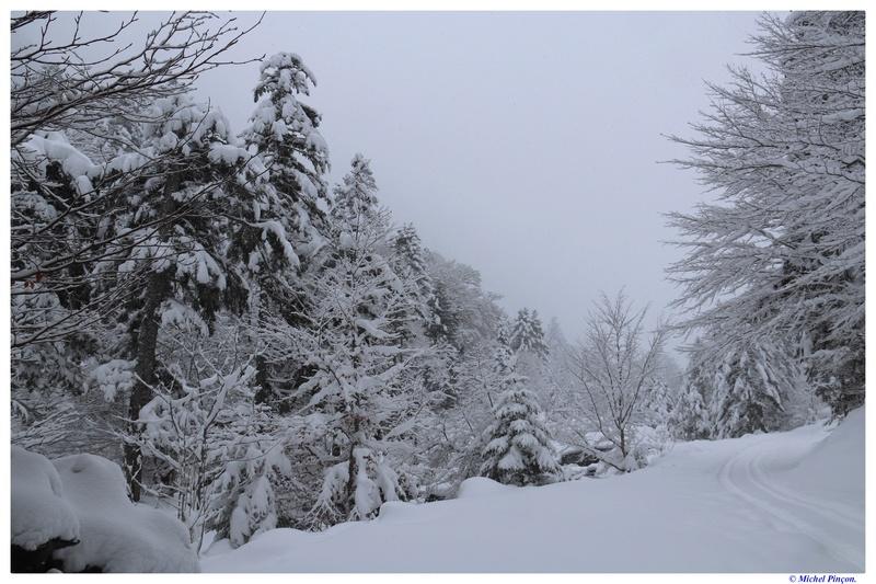 Une semaine à la Neige dans les Htes Pyrénées - Page 6 Dsc01464