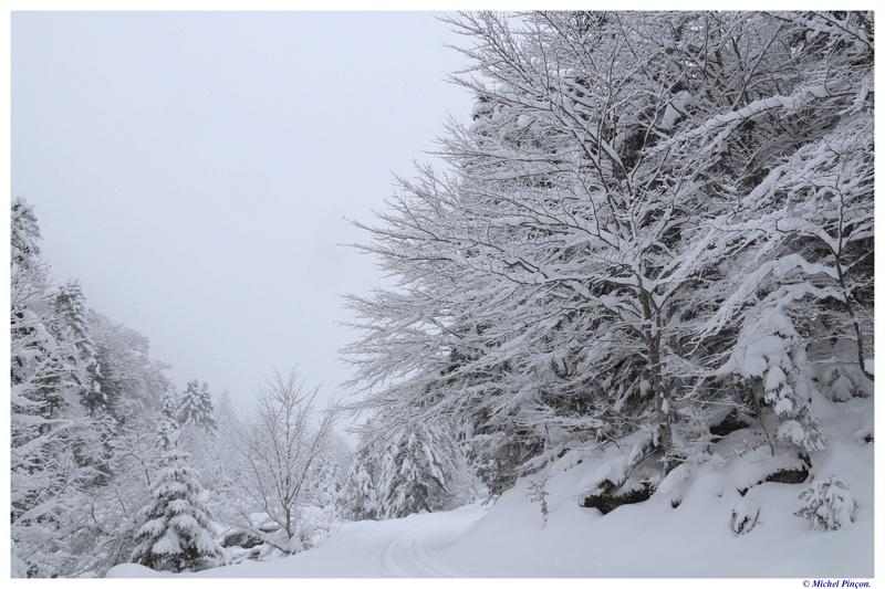 Une semaine à la Neige dans les Htes Pyrénées - Page 6 Dsc01465