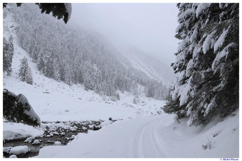 Une semaine à la Neige dans les Htes Pyrénées - Page 6 Dsc01466