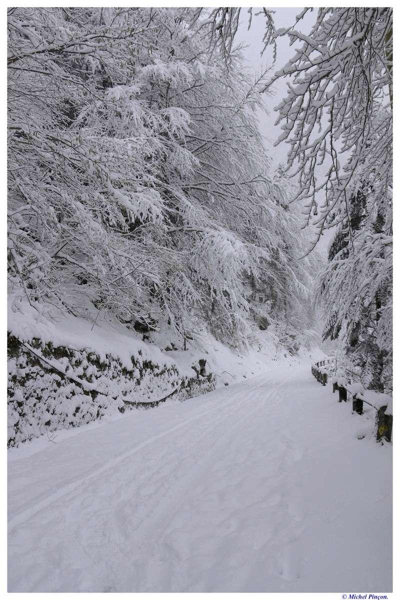 Une semaine à la Neige dans les Htes Pyrénées - Page 6 Dsc01468