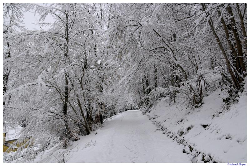 Une semaine à la Neige dans les Htes Pyrénées - Page 6 Dsc01470