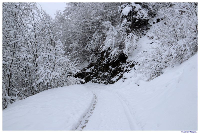 Une semaine à la Neige dans les Htes Pyrénées - Page 6 Dsc01479