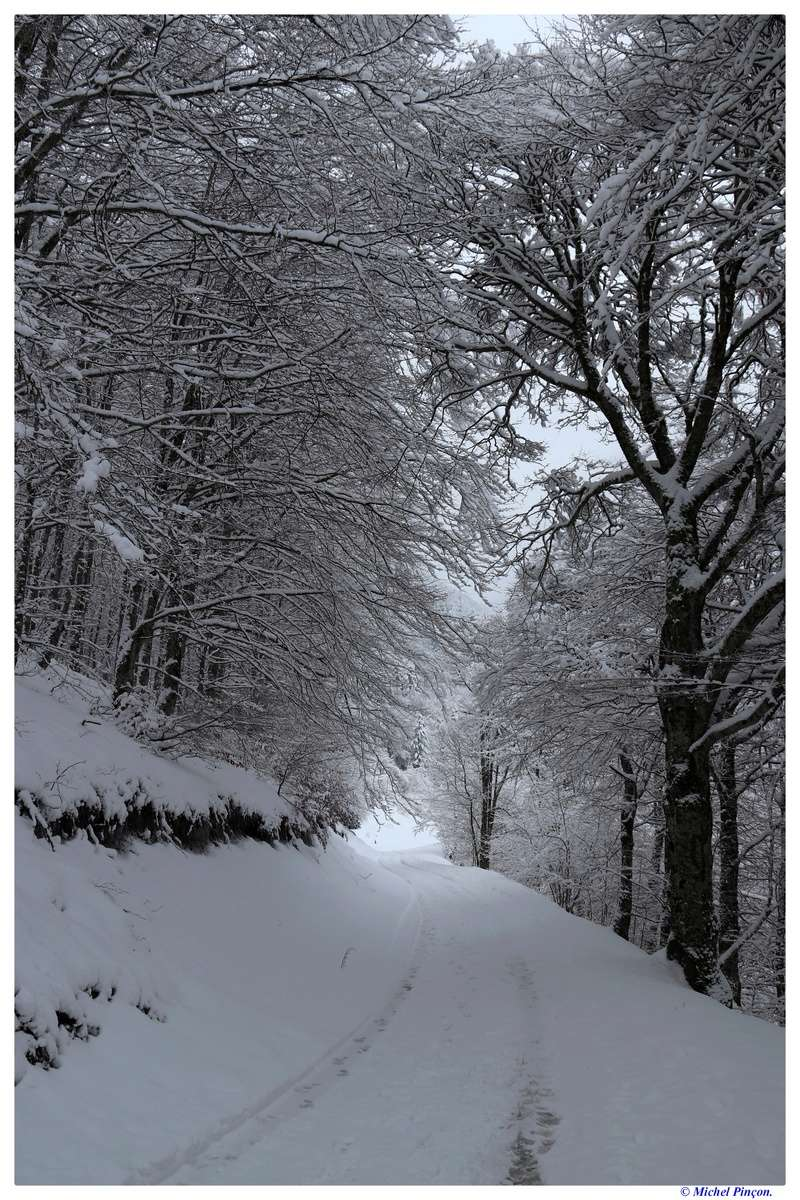 Une semaine à la Neige dans les Htes Pyrénées - Page 6 Dsc01481