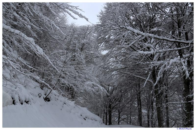 Une semaine à la Neige dans les Htes Pyrénées - Page 6 Dsc01482