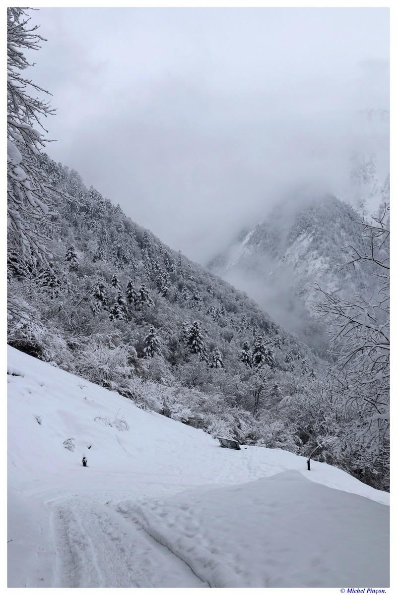 Une semaine à la Neige dans les Htes Pyrénées - Page 6 Dsc01483