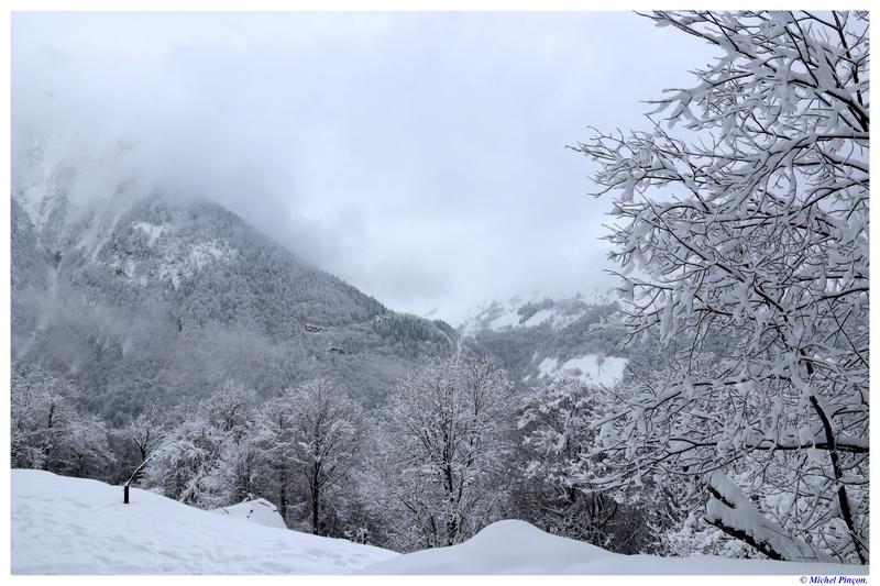 Une semaine à la Neige dans les Htes Pyrénées - Page 6 Dsc01485