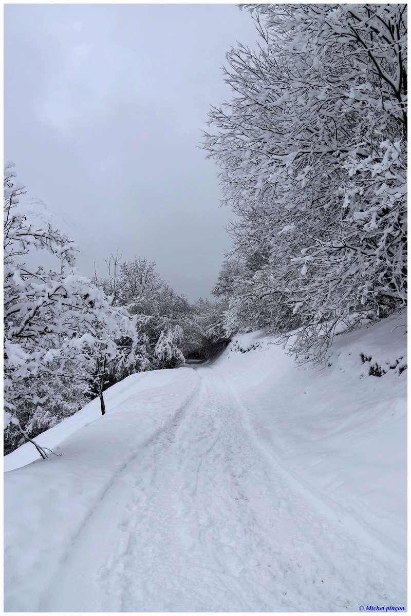 Une semaine à la Neige dans les Htes Pyrénées - Page 6 Dsc01486