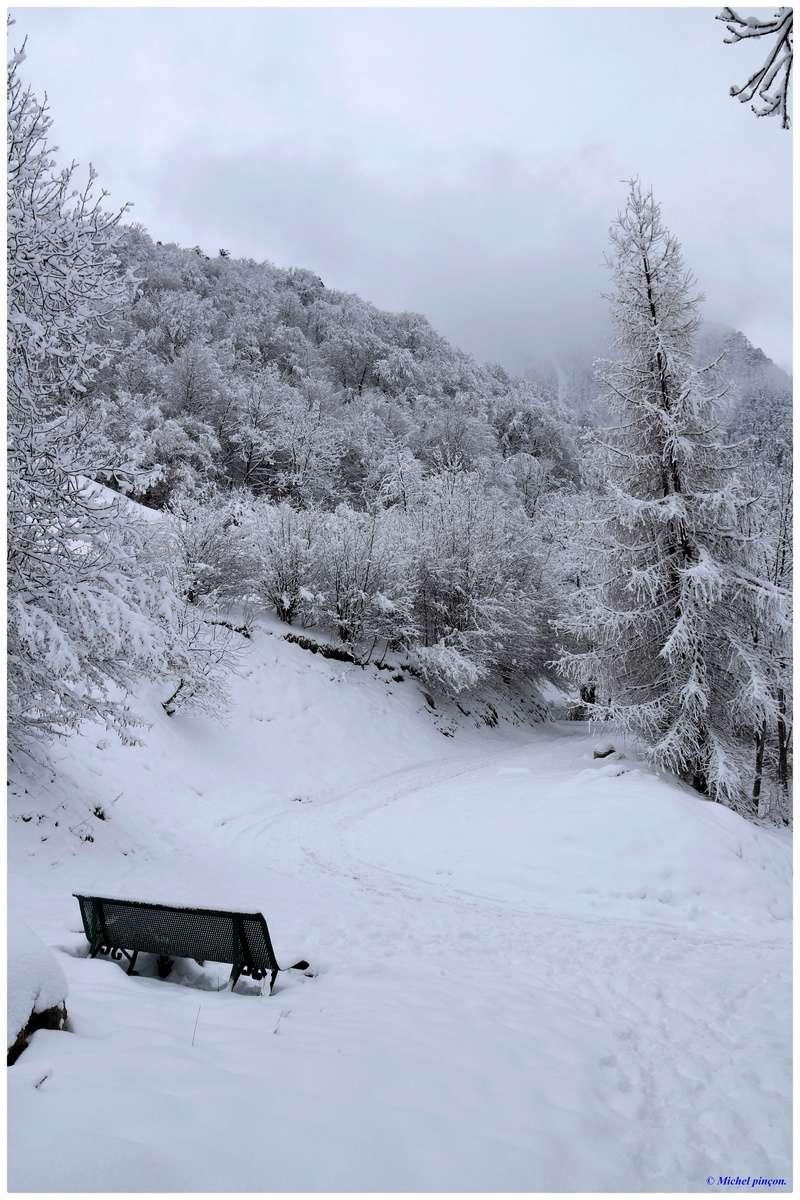 Une semaine à la Neige dans les Htes Pyrénées - Page 6 Dsc01487