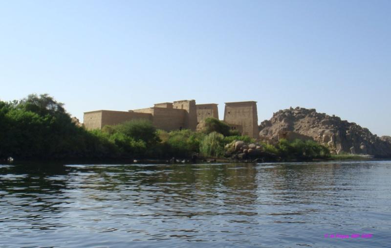 Ballade en Egypte - Page 3 Dsc01877