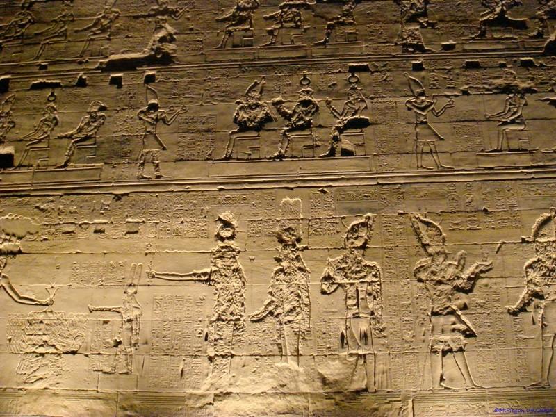 Ballade en Egypte - Page 3 Dsc01885