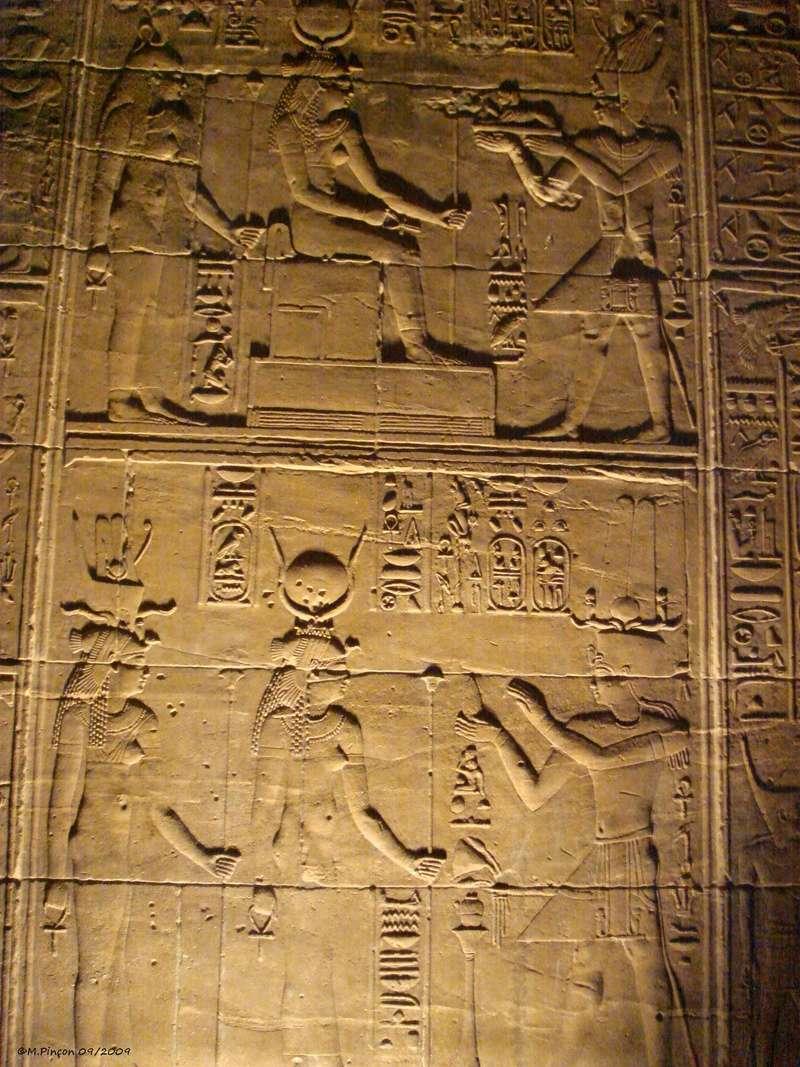 Ballade en Egypte - Page 3 Dsc01901