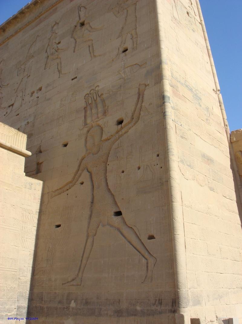 Ballade en Egypte - Page 3 Dsc02042