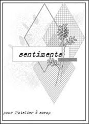 Chaine du 15 Octobre  - Page 2 5598be10