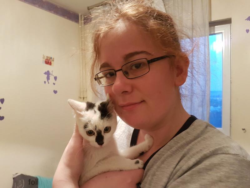INAYA - chaton femelle, née environ mi novembre 2017 - en FA chez Abysse (92) - ADOPTEE PAR LESLIE et JULIEN (94)  20180348