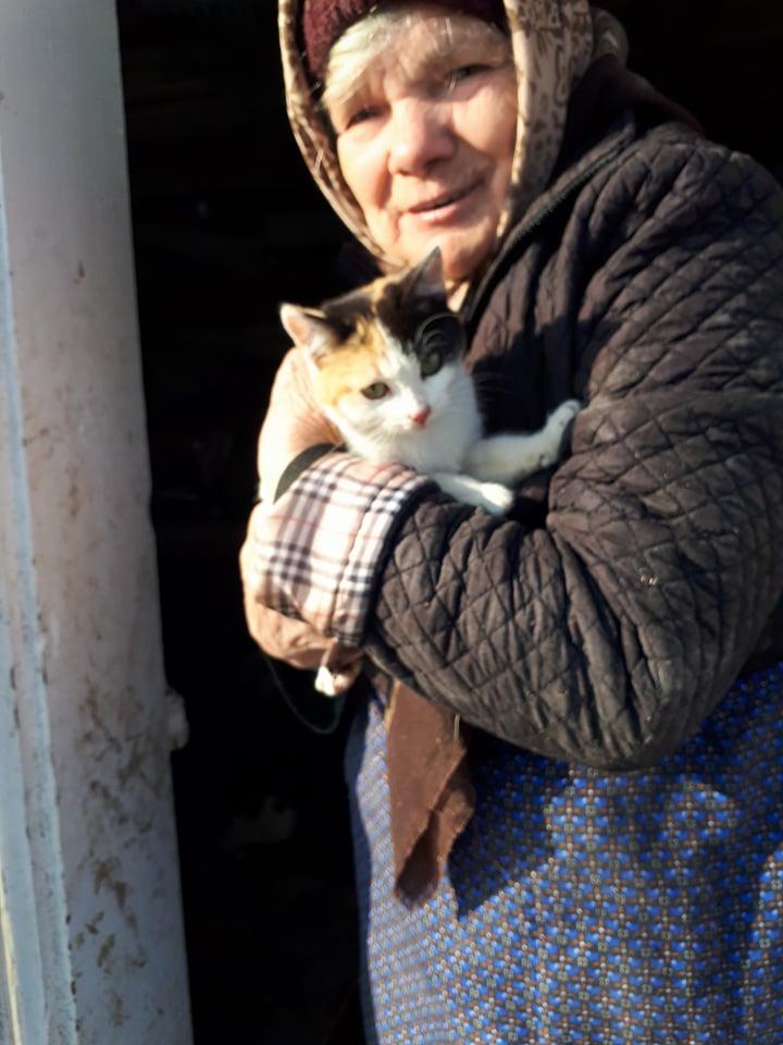 BICKY (ex NASKA) - chaton femelle, née environ novembre 2017 - adoptée par Lorène et Julien (75) Naska210
