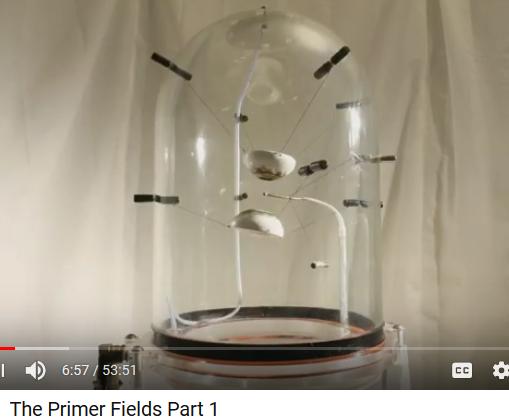 Primer Fields Vacuum10