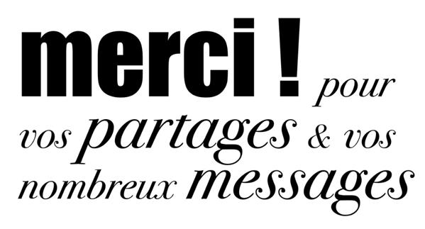 4 VOYAGES DE LA DERNIÈRE CHANCE POUR SAUVER 17 CHIENS  15317810