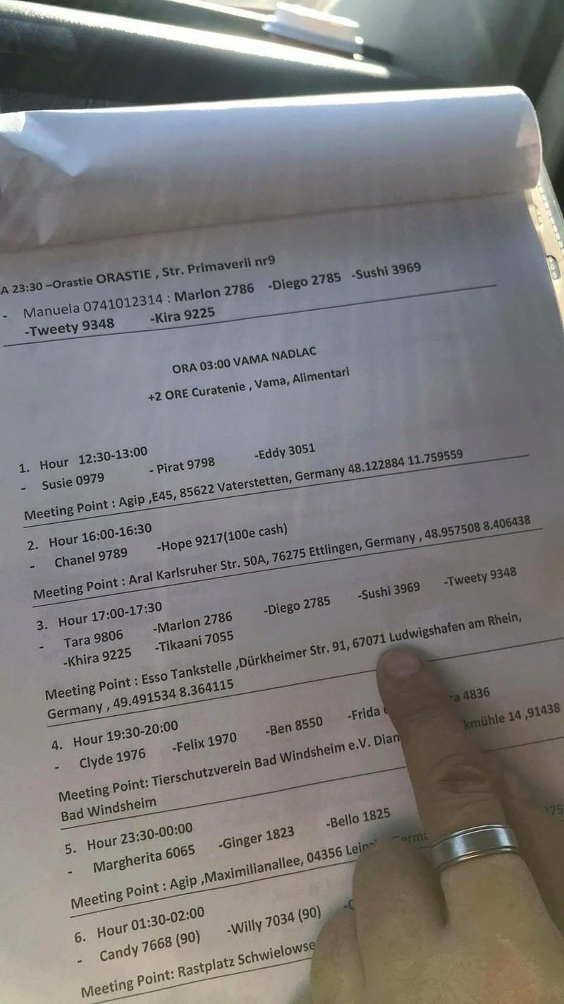 ROUMANIE : RAPATRIEMENT PAR CAMION - Arrivée le 4 Novembre 2017 en Allemagne 23192310
