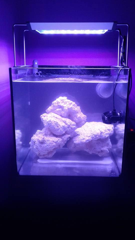 nano cubique ' 64 litres ' ' stefprisci '   24171810