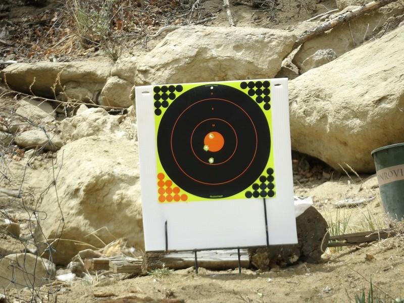 Accuracy Test395gr Lyman Plains Bullets 100_1516