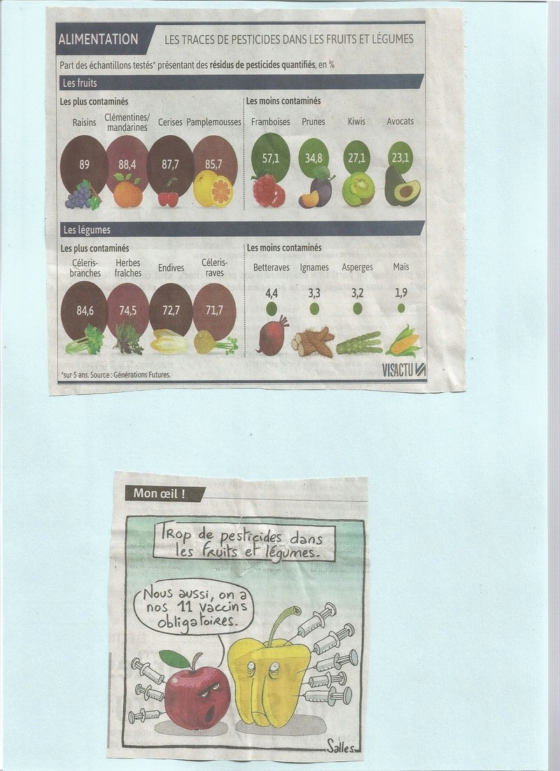 Nos légumes du marché Scan10