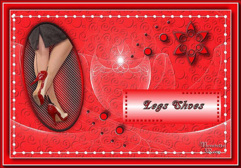 Legs Shoes Legssh11
