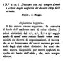 Drapeau du 1er régiment d'infanterie légère napolitaine 211010