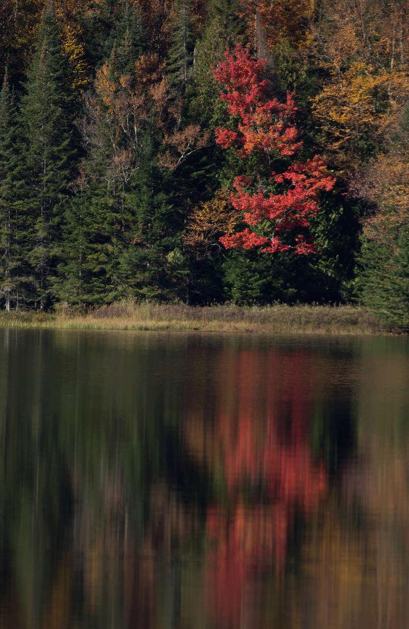 Réflexions sur le lac Monroe. C247810