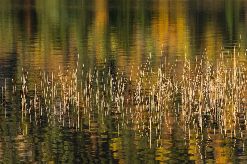 Réflexions sur le lac Monroe. C257910