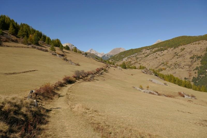 Petit tour dans le Queyras, pour voir les Mélèze en feu  (enfin doré quoi !) P1040812