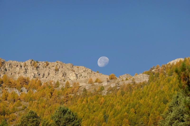 Petit tour dans le Queyras, pour voir les Mélèze en feu  (enfin doré quoi !) P1050010
