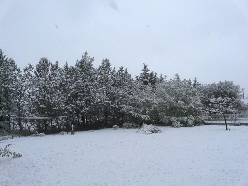 Episode neigeux dans le sud-est P1130012