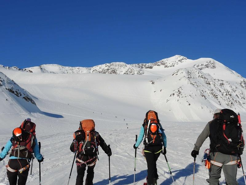 Raid en Ortlès J6 : Mont Cevedale 3769 m J6-210