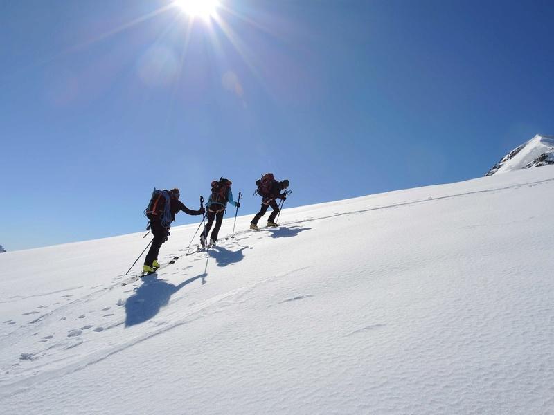 Raid en Ortlès J6 : Mont Cevedale 3769 m J6-710